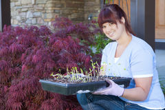 Planting season. A young woman displays a tray of seedlings for her vegetable garden Royalty Free Stock Photos