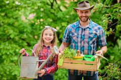 Planting season. Family garden. Maintain garden. Planting flowers. Family dad and daughter planting plants stock photo