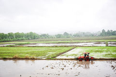 Planting season. Farmers are plowing to planting crops. Northern of Thailand Stock Photo