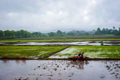 Planting season. Farmers are plowing to planting crops. Northern of Thailand Stock Photos
