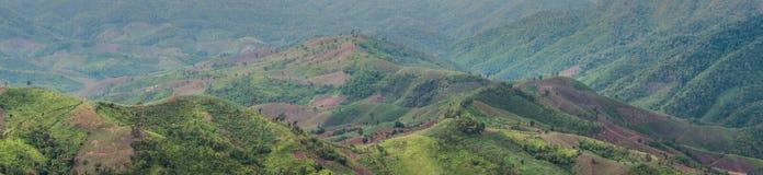 Planting season. Landscape of mountain planting season, panorama Royalty Free Stock Image