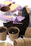 Planting Seeds 2 Royalty Free Stock Image