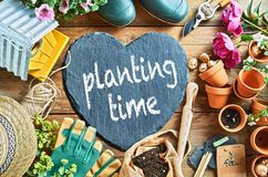 Planting time concept Stock Image
