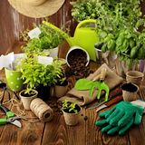 Planting tools. Gardening tools, watering can, seeds, plants and soil Stock Photo