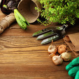 Planting tools Stock Images