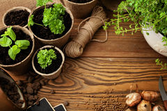 Planting tools Stock Photography