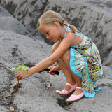 Planting a tree. A little girl planting a tree on a rocky surface, depicting about children doing their best for the environment Royalty Free Stock Images
