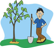 Planting A Tree. Illustration of a man planting a tree Stock Photography