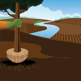 Planting a tree Arbor Day farm scene. EPS 10 vector stock illustration Stock Images