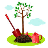 Planting a tree in the ground. royalty free illustration