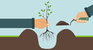 Planting a tree with roots, one hand holding a tree, another shovel with soil. Flat design, vector illustration, vector vector illustration