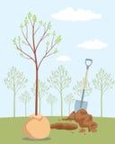 Planting tree Stock Photography
