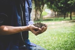 Planting a tree, Two hands of young man were planting the seedlings and tree growing into soil while working in the garden as save. The world, earth day, nature royalty free stock photos
