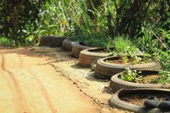 Planting trees in the car wheels Along the pathway stock photos