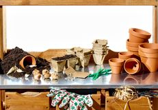 Planting up spring bulbs in terracotta flowerpots. With loose soil pots seeds, gloves and cardboard containers on a shelf with copy space behind Royalty Free Stock Photography