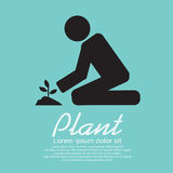 Planting Vector Illustration Royalty Free Stock Image