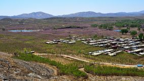 The planting in a village,in the mountainous area of northern China royalty free stock photos