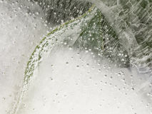 Plants and air bubbles in the ice. Abstract background of a fragile brittle white ice with frozen bubbles and frozen green plants Stock Photo