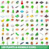 100 plants and animals icons set, isometric style Stock Photography
