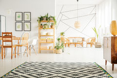 Plants in apartment. Potted plants in white studio apartment interior stock photos