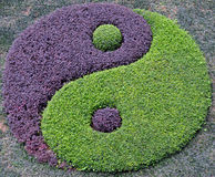 Plants Arranged into the Symbol of Taiji. Plants of different colors are planted together to form the symbol of the Taiji, which represents Yin and Yang Royalty Free Stock Photo