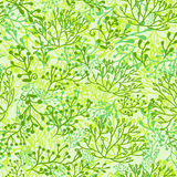 Plants background. Green Royalty Free Stock Images