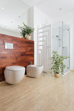 Plants in bathroom Stock Images