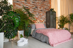 Plants in bedroom. Plants in modern bedroom with brick wall and bed Stock Image