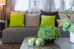 Plants in black ceramic vase in living room Royalty Free Stock Photos