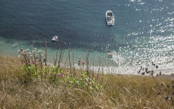 Plants, blue sea and a boat - Durdle Door, Dorset, England. The picture shows some blue, shiny waters and some plants on the shore in Dorset, Durdle Door Royalty Free Stock Photos