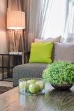 Plants in ceramic vase in living room Stock Images