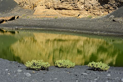 coast of Green Lagoon in volcanic landscape, El Golfo, Lanzarote, Canary Islands, Spain stock photography