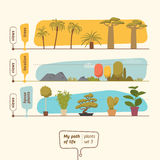 Plants collection vector illustration Royalty Free Stock Image