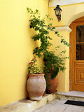 Plants in a doorway in Corfu. Two large potted plants next to a doorway in Corfu Town, Greece Stock Photos