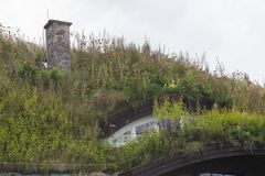 Plants on the ecological  rooftop. Plants on the ecological rooftop- green roof Royalty Free Stock Images