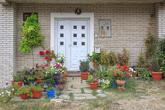Plants Entrance. Flowers and plants in front of house entrance Royalty Free Stock Images