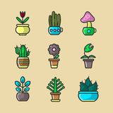 Plants and flowers in pots vector collection of sixteen elements. Vector poster of various types of cactus and blooming flowers with green stems and leaves vector illustration