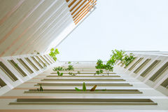 Plants and Flowers Reaching out of Apartment Stock Image