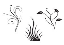 Plants and grass. Three silhouettes of ornamental plants isolated in white background Royalty Free Stock Photo