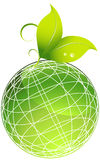 Plants with Green Globe royalty free stock images