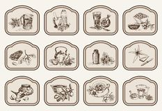 Plants and herbs in folk medicine stock illustration