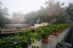 Plants and historic buildings in fog, at Ngong Ping, Lantau Isla Stock Photography