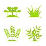 Plants icons Stock Image