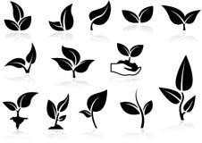 Plants Icons Set Stock Photography