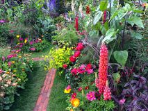 Free Plants In A Garden Royalty Free Stock Images - 93121339