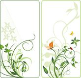 Plants and insect. Abstract backgrounds for two ca. Rds. Vector illustration Royalty Free Stock Photos