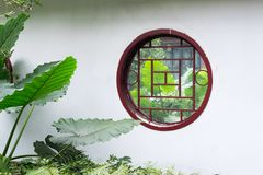 Plants with large leaves thhough a circular window on a white wa Stock Images