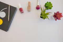 Plants and manicure. A white background with plants, notebook and nail polish Stock Photography