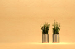 Plants and metallic pots. Royalty Free Stock Photo