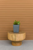 Plants in modern grey pot on round wood table Stock Photography